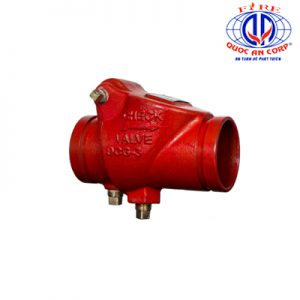 DGC Swing Check Valve Grooved Aleum